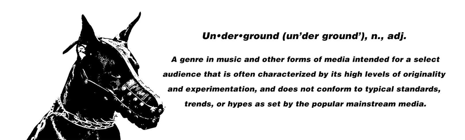 Izaq rolands step into the shadows whats next underground underdogs the underground media outlet biocorpaavc